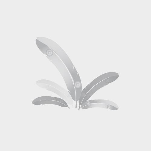 Frozen AMF Chicken Coxinha 1Kg